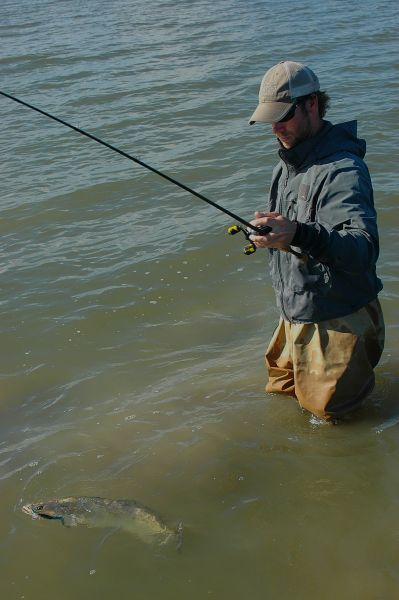Sabine lake trout regs for Sabine lake fishing